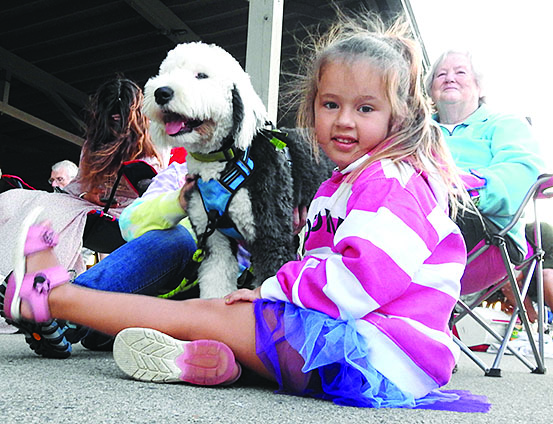 little girl in pink and white sweatshirt sitting next to old english sheepdog puppy